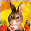 Аватар для Никита Соловьев