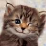 Аватар для Анюта Кобзарёва